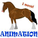 Bay horse animation