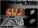 Brush Fur Long
