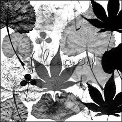 image pack foliage 04
