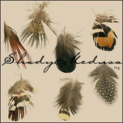 mix-feathers by ShadyMedusa-stock
