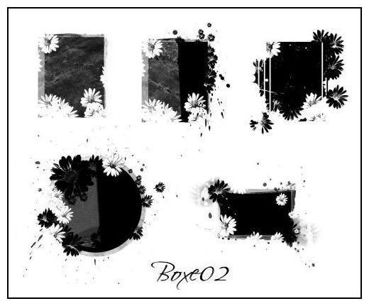 BOXE-02
