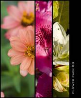 Flower Package 03 by nighty-stock