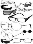 Eyeglass and Sunglass Brushes
