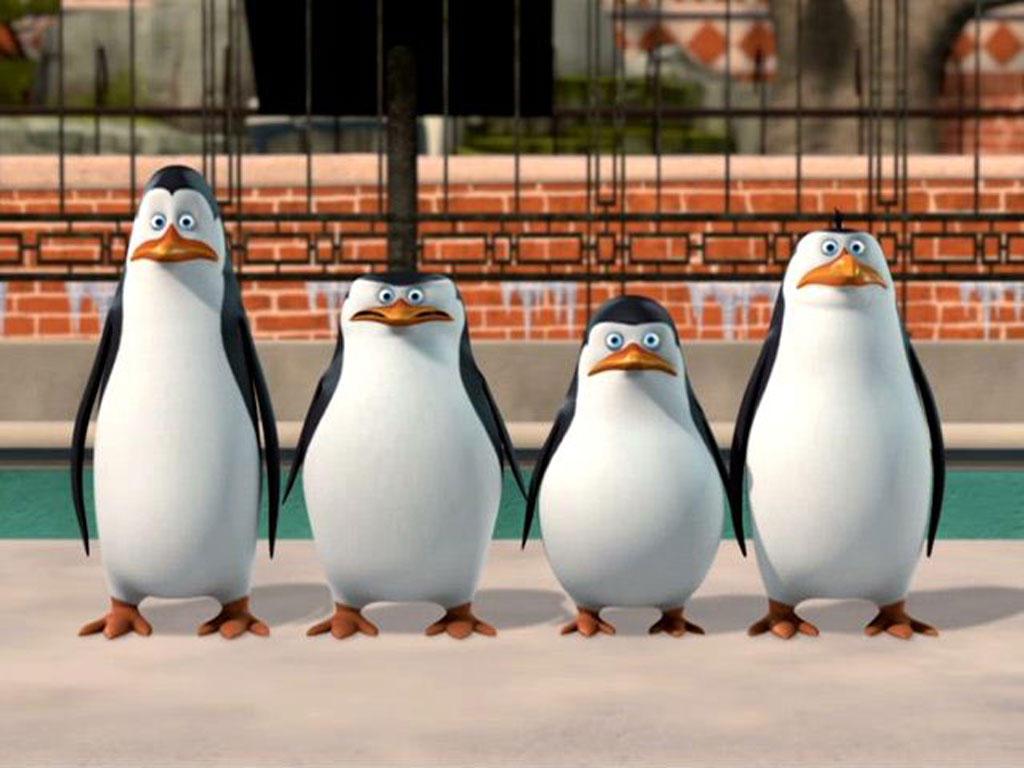 penguins of madagascar x readerscrougeofares on deviantart