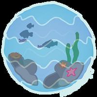 Aquarium by pSarahdactyls