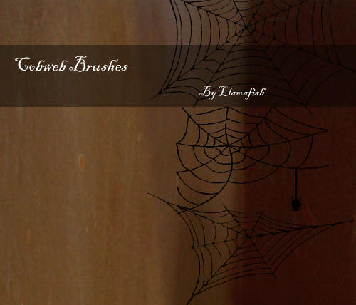 Cobweb brushes by llamafish