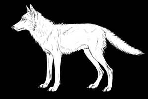 Wolf-- free lineart by Canis-ferox