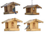 little house birds png
