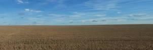 Panorama field