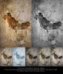 Wall texture 01