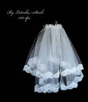 Veil. by PrincessInHeaven