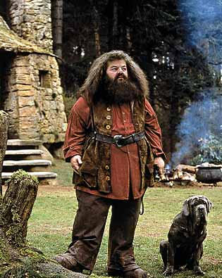 hagrid in costume harry potter