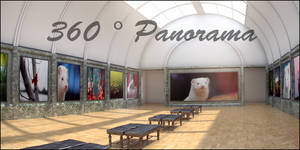 Gallery Contest Entry Panorama