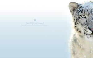 Snow Leopard by jmcgrew