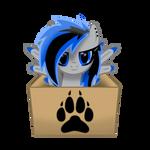 Shadow Wolf (In a box #16)