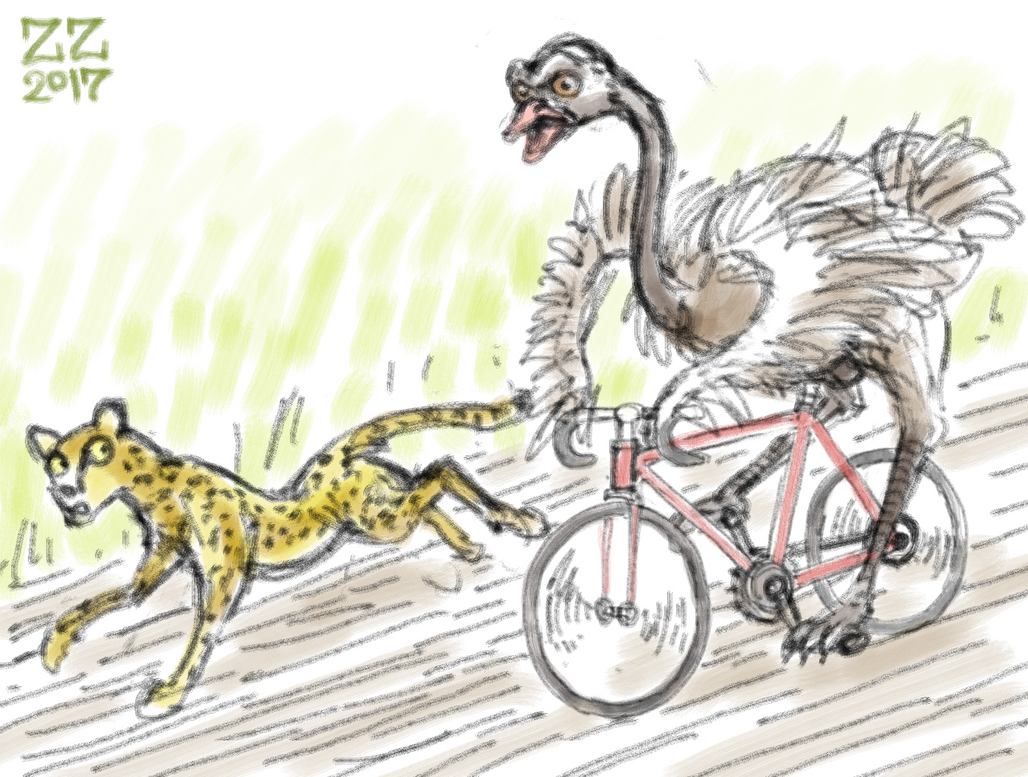Draw me a bird on a bike by zenzmurfy