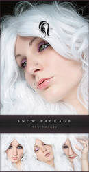 Package - Snow - 3 by TrishaMonsterr