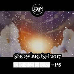 Snow Brush 2017