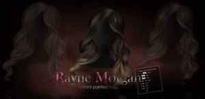 RM - Instant Painted Hair 172 by RayneMorgan