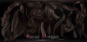 RM - Instant Painted Hair Collection 03 by RayneMorgan