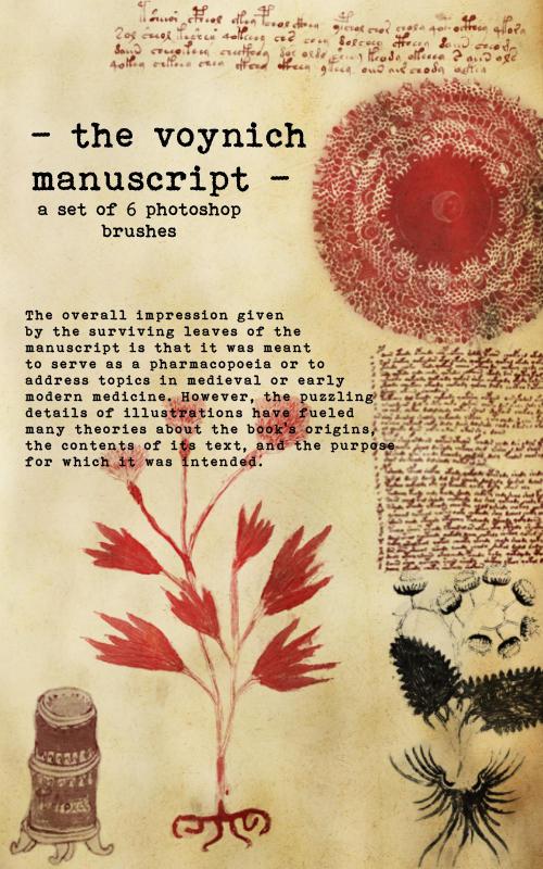 Copy of The Voynich Manuscript The Voynich Manuscript by