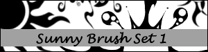 Sunny Brush Set 1 by Duckie16