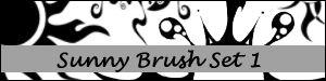 Sunny Brush Set 1