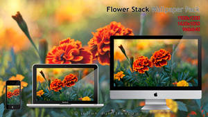 Flower Stack - Wallpaper pack