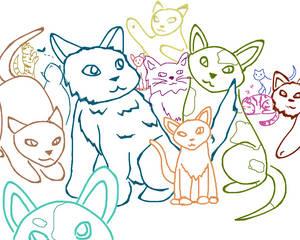 Cats #1