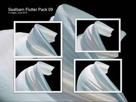 JBS Seafoam Flutter Pack 09 by geoectomy-stock