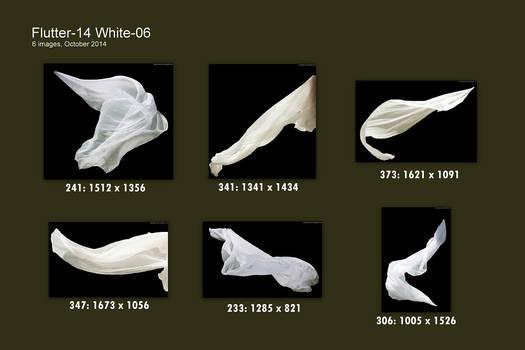 JBS Flutter-Pack White 06