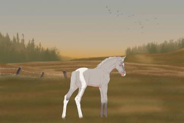 NewFoal * DECEASED *