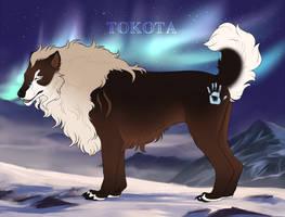 Alaska 406 by TotemSpirit