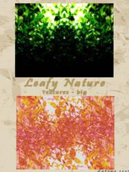 Leafy Nature by kittysphoenix