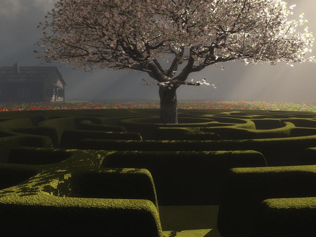 A maze by relhom
