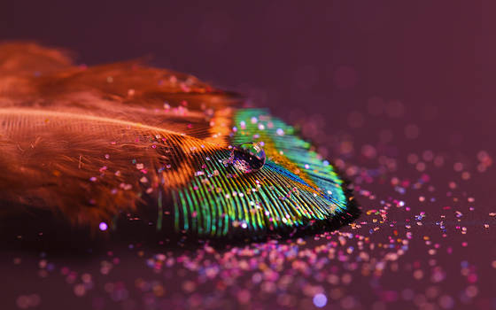 Featherlight_wall