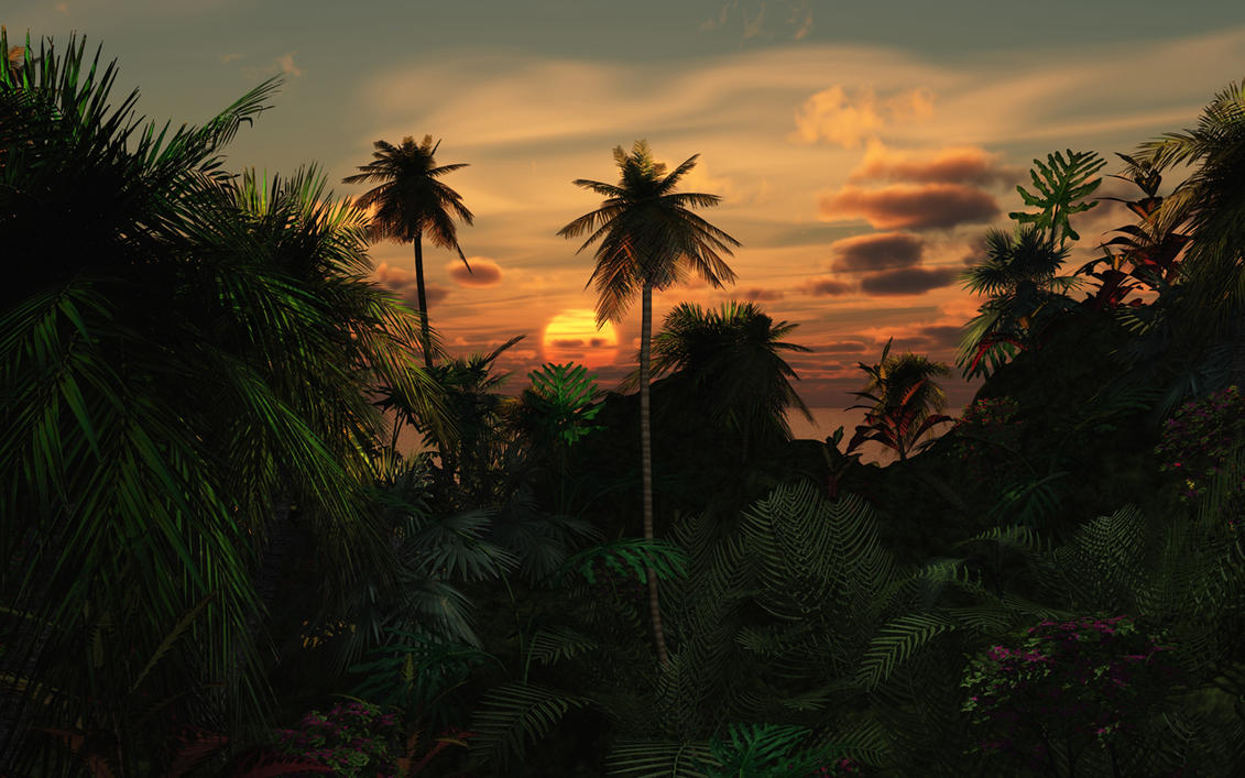 Tropical_wide by relhom