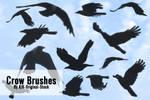 Crow Brush pack