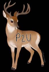 P2U Whitetail Buck