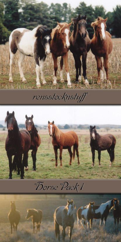 Horse Pack 1 by rensstocknstuff on DeviantArt