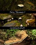 Fairy 'Shrooms 1