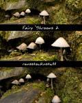 Fairy 'Shrooms 2 by rensstocknstuff