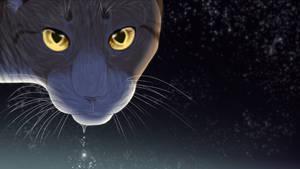 Stargazing by Saakumi