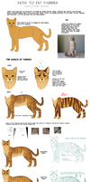 Tutorial | How to Tabby