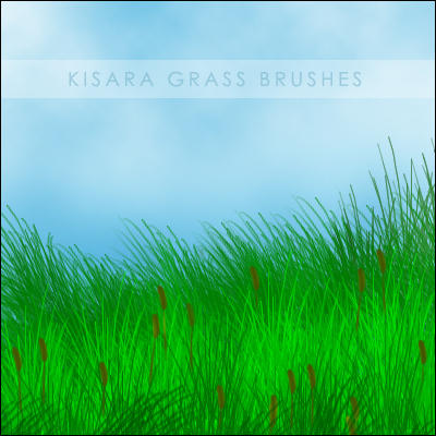 Grass Brushes by KisaraGirl