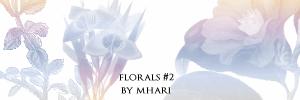 Florals II by mhari
