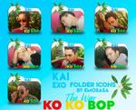 KAI (EXO) 'KO KO BOP' Folder Icons