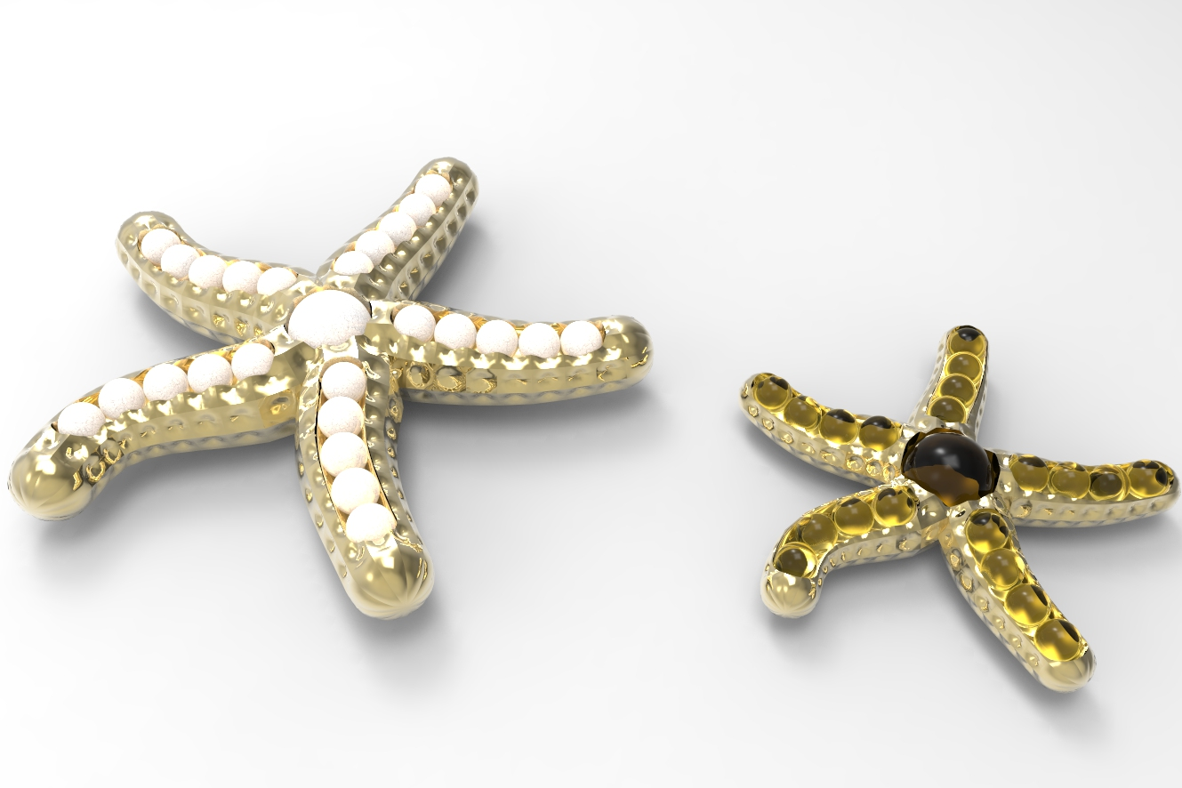 StarFish 3d [01_2015] by zakpoint