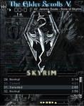 Skyrim amp