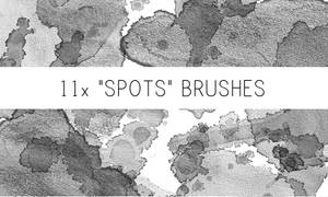 Spots Brushes No.2